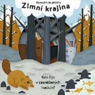 Zimní krajina - Nakoukni do příběhu [Knihy - Leporelo]